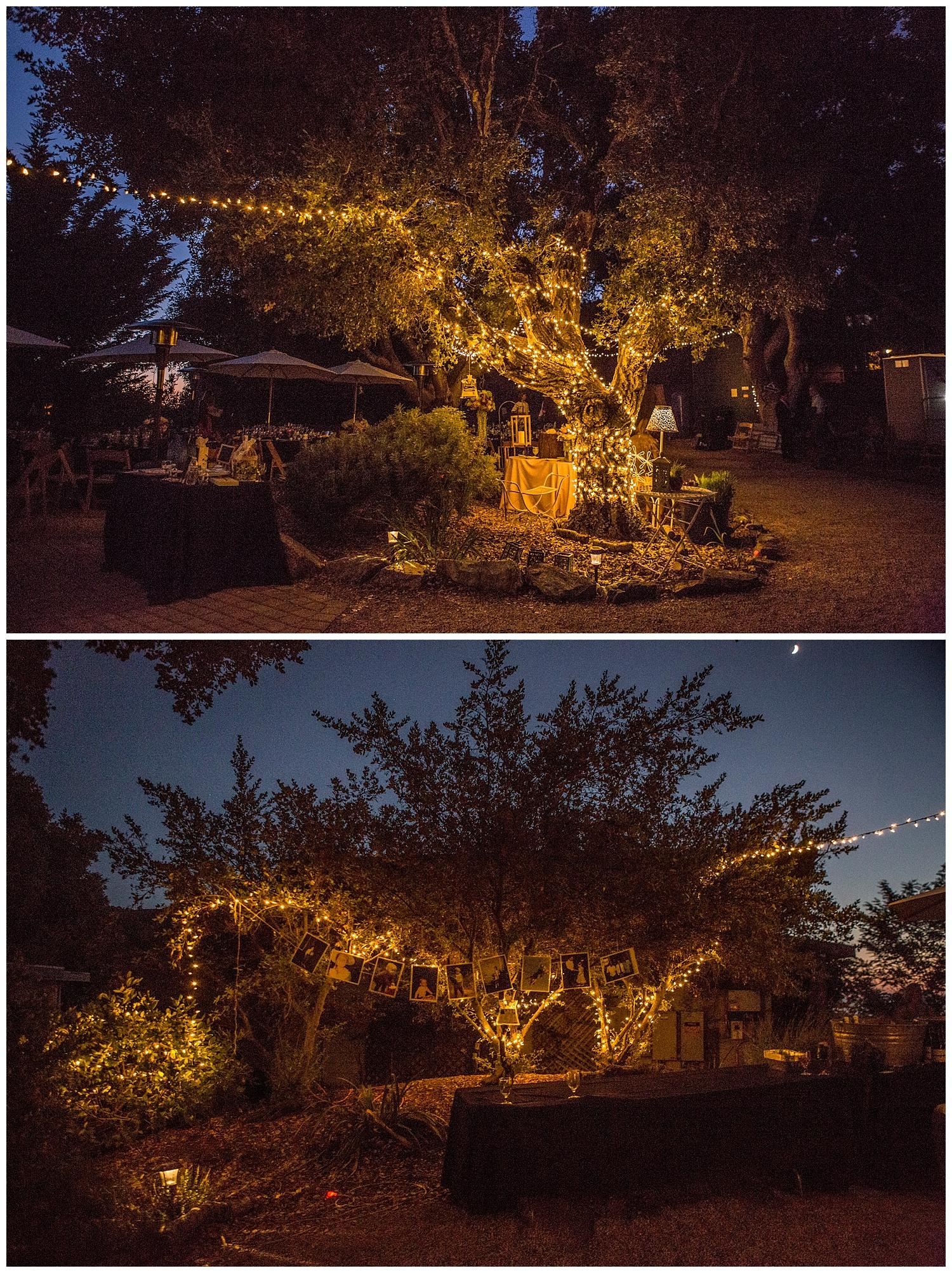big-sur-summer-night-wedding-carol-oliva-photography.jpg