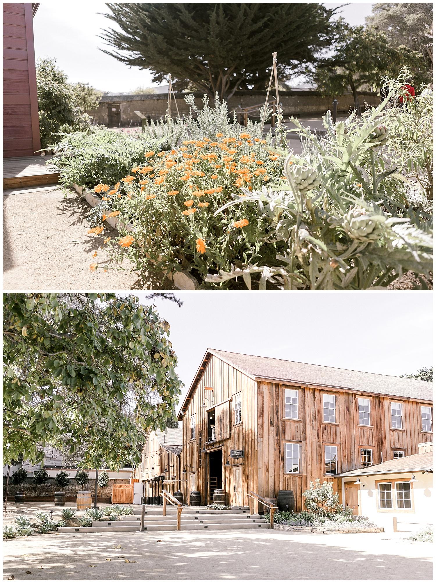 the-barns-cooper-molera-outside-venue-ags-photoart-summer-wedding.jpg