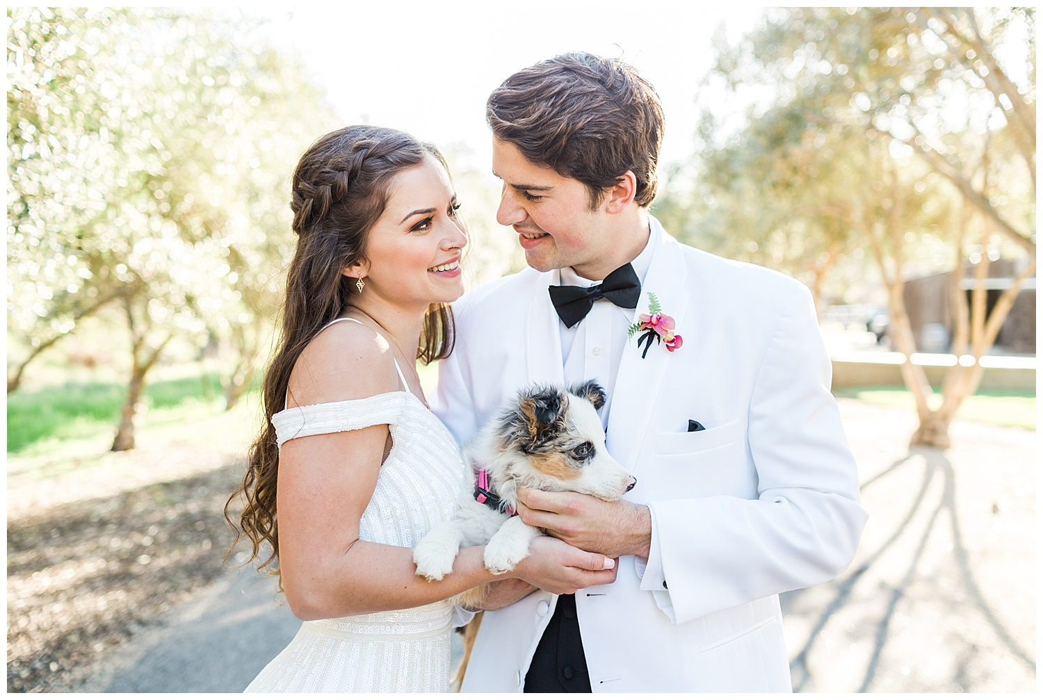 Epiphany-bride-and-groom-puppy-portrait.jpg