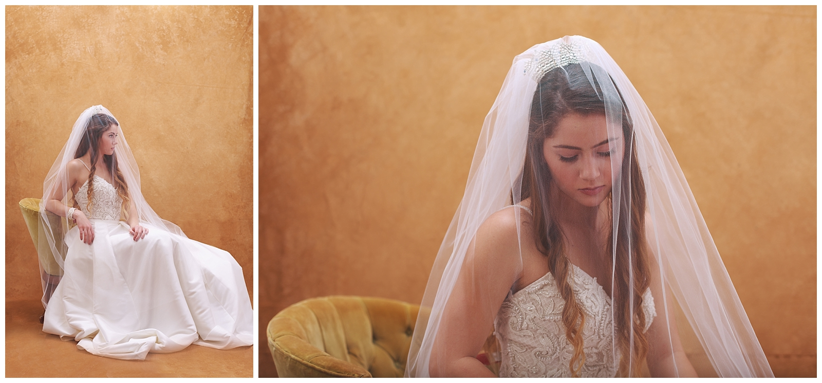 Bridal-Portraits-Veil-Inspiration-AGS-Photo-Art.jpg