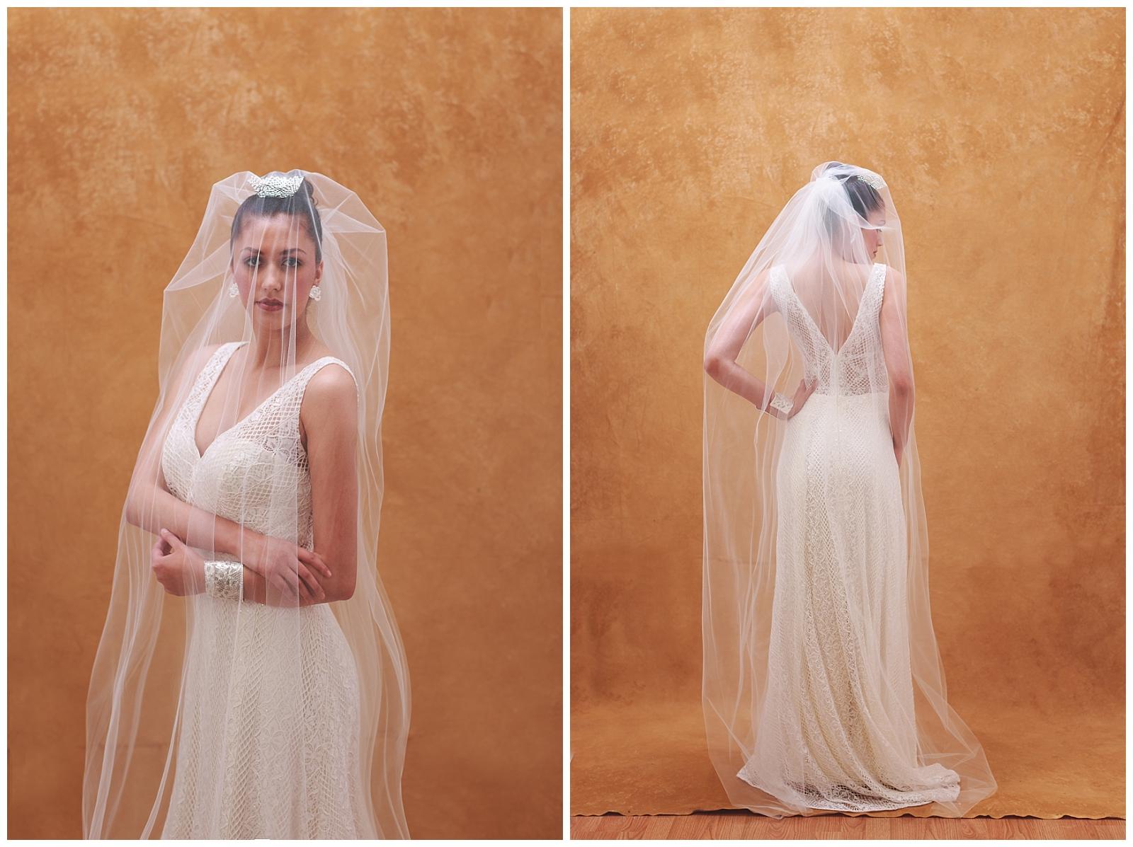 Bridal-Portraits-Veil-Inspiration-Epiphany-Gown-AGS-Photo-Art.jpg