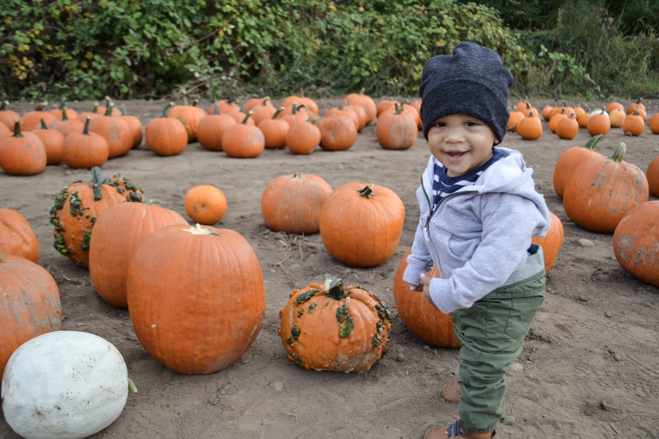 Only legit smiling picture before he fell on the bumpy pumpkin beside him.