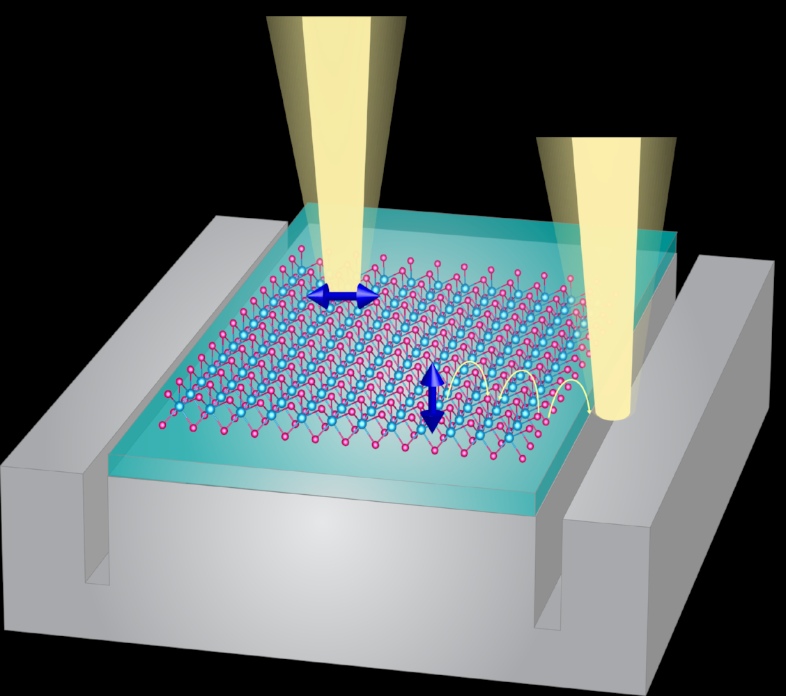New Near-Field Spectroscopy for Two-Dimensional Materials