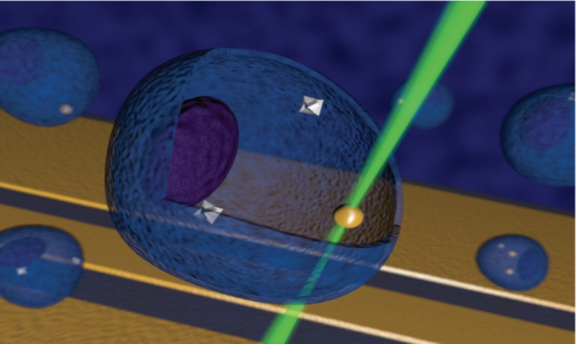NV-Based Temperature Sensor