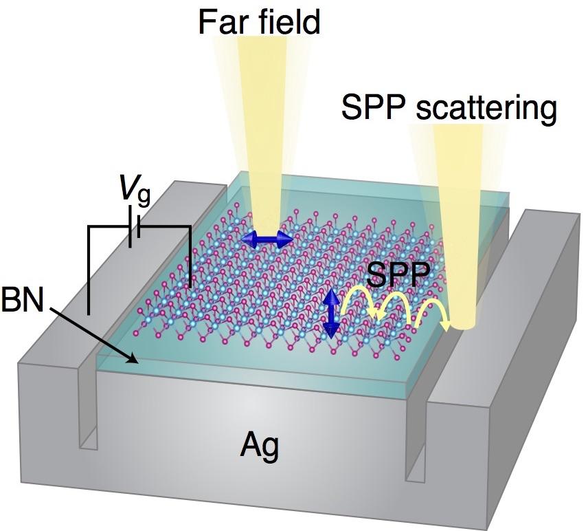 WSe2 dark exciton PL schematic.jpg