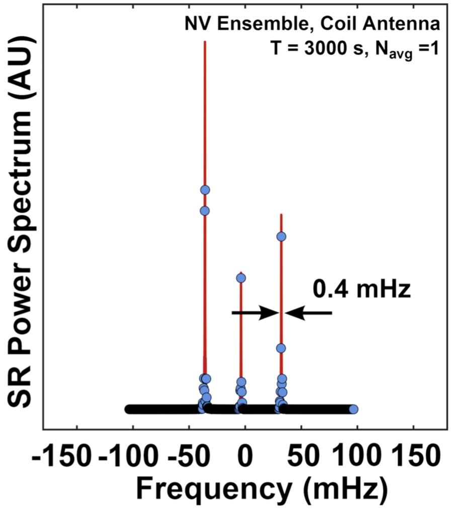 NV-NMR.jpg