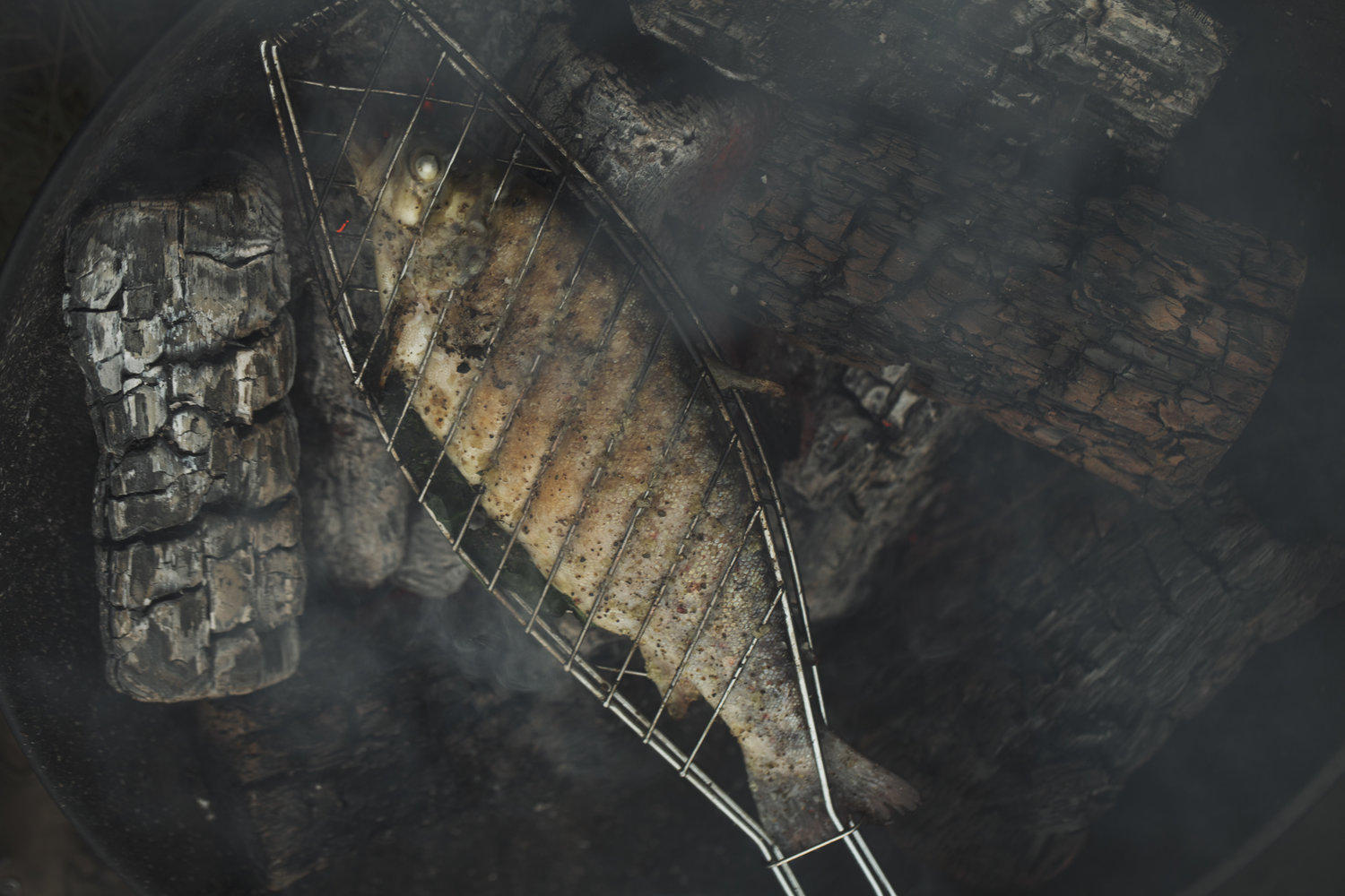Grilled barbecued fish bbq, a food still life lifestyle shot.