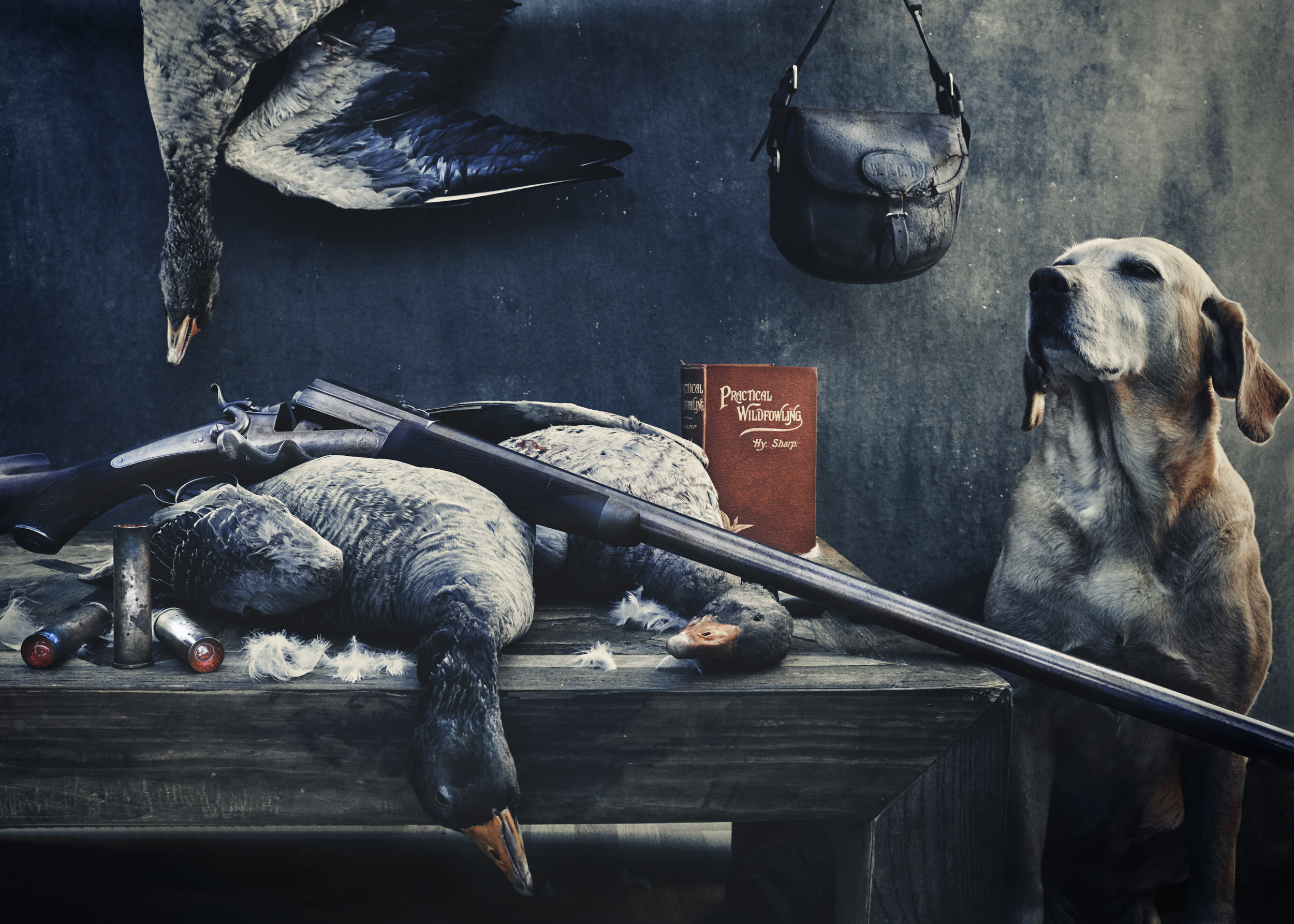 Fresh wildfowl, a shotgun and a dog photographed by Matthew Lloyd in the style of old paintings