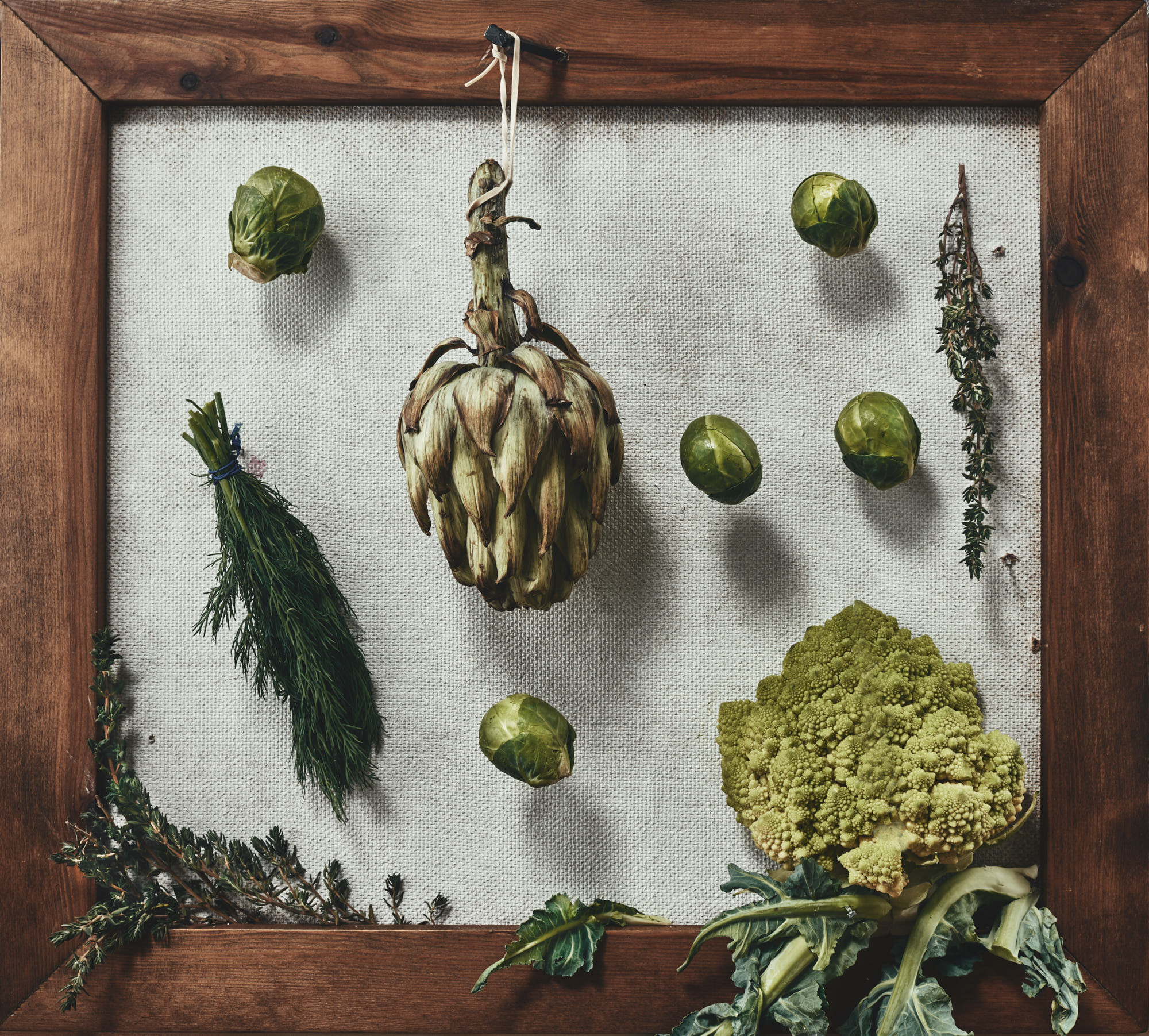 Photographic Trompe l'œil still life food photograph of vegetables in a frame, in the style of an old botanical illustration by harrogate, leeds yorkshire commercial advertising photographer