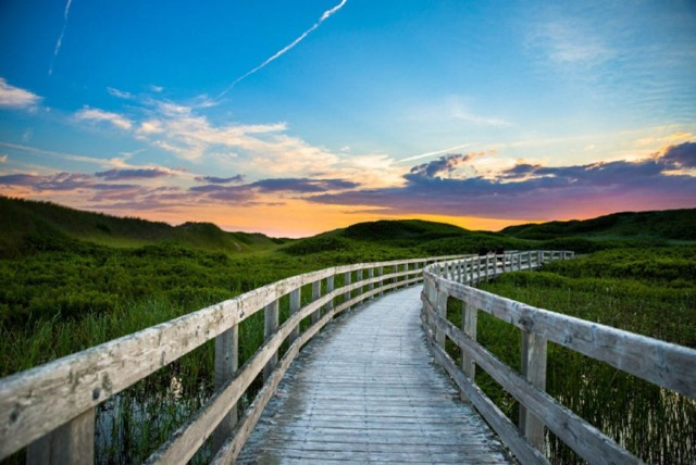08-boardwalk-pei-national-park-tourism-pei-carrie-gregory.jpg.size.custom.crop.1086x725.jpeg