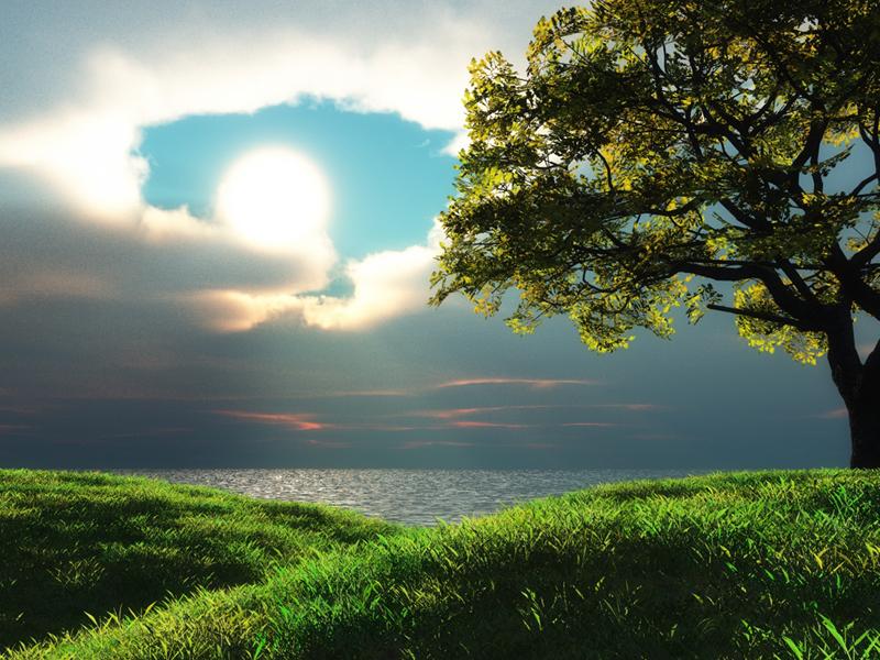 beautiful-god-s-creation-god-the-creator-10864891-800-600.jpg