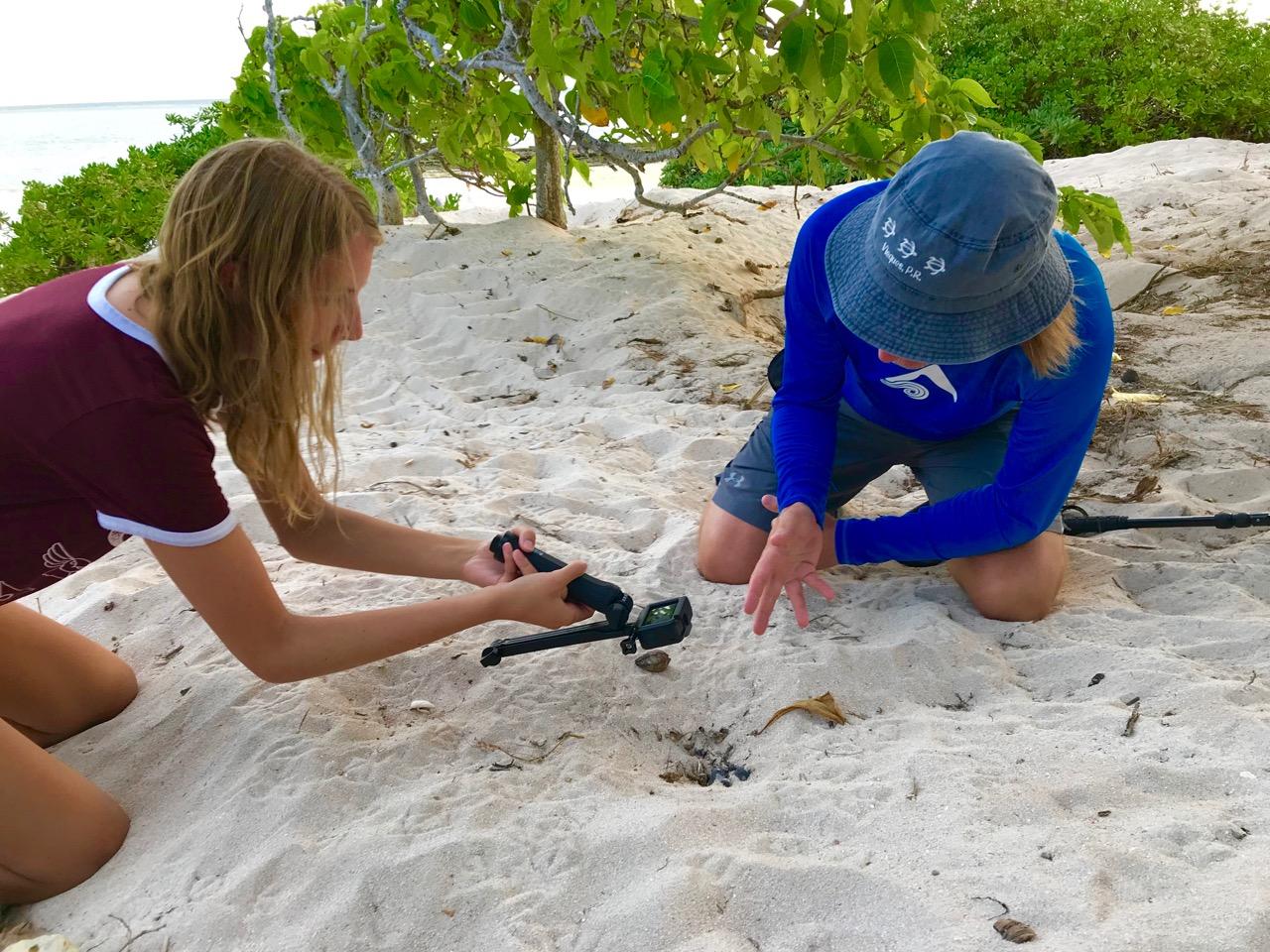 Autumn & Mitchell vlog about this turtle nest around which we stand vigil.