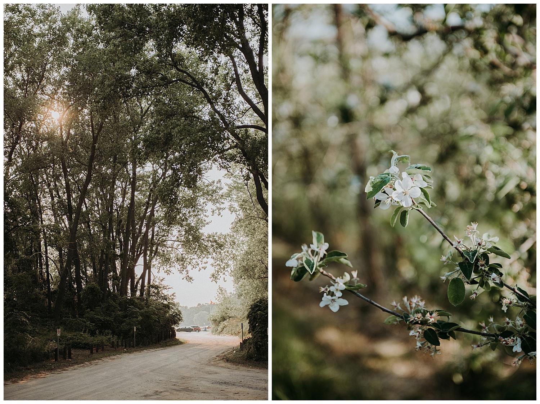 Holly McMurter Photographs | Spring Minis_0004.jpg