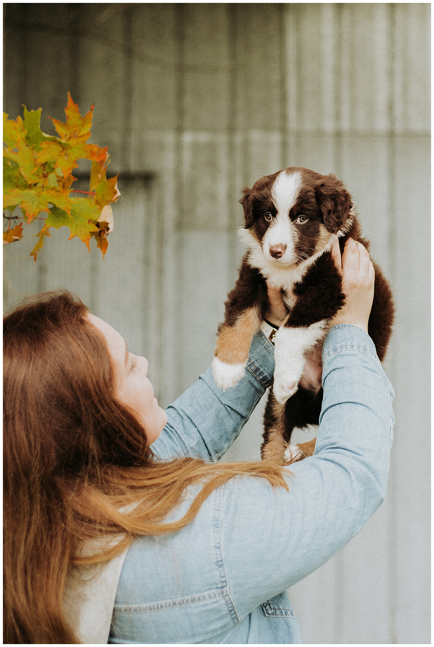 Holly McMurter Photographs | Prince Edward County | Fall Mini Session_0006.jpg