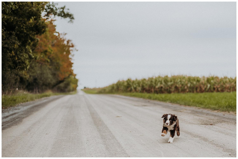Holly McMurter Photographs | Prince Edward County | Fall Mini Session_0024.jpg