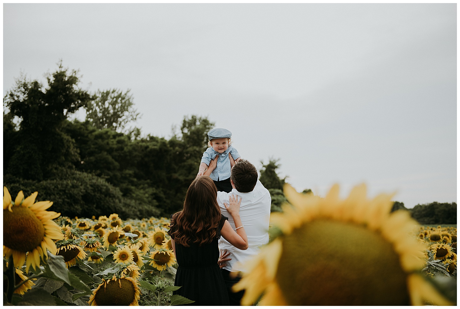Holly McMurter Photographs | Prince Edward County Sunflower Family Session_0002.jpg