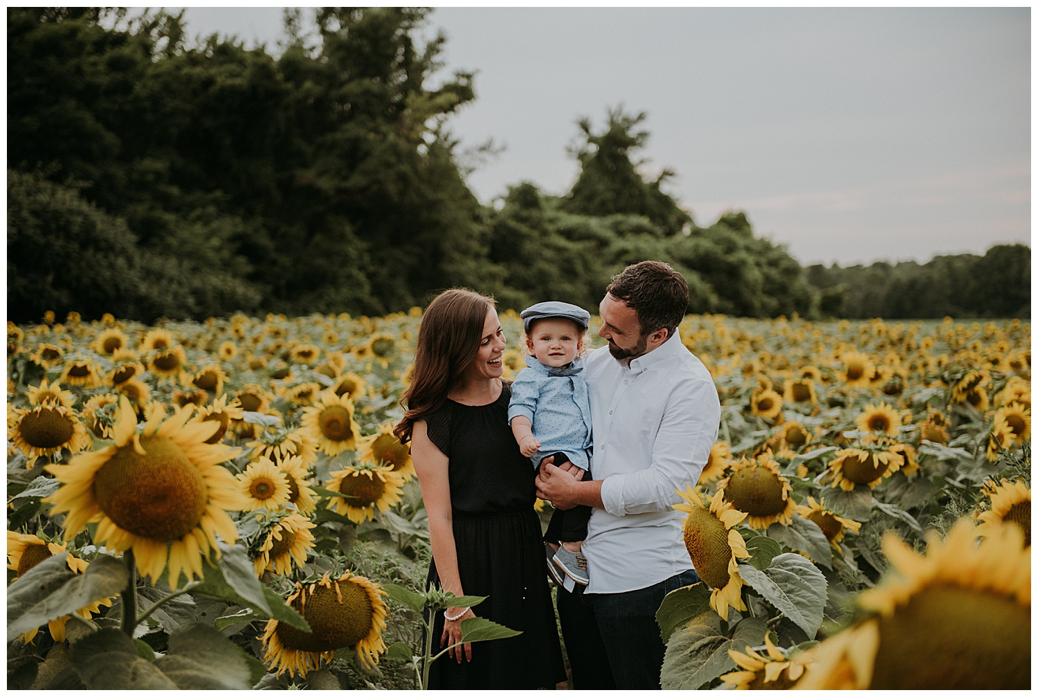 Holly McMurter Photographs | Prince Edward County Sunflower Family Session_0001.jpg