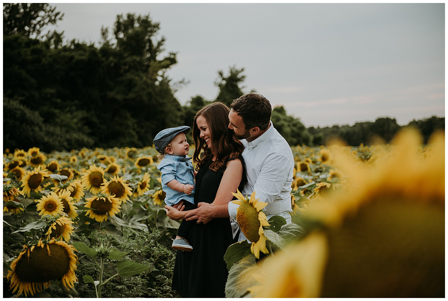 Holly McMurter Photographs | Prince Edward County Sunflower Family Session_0005.jpg