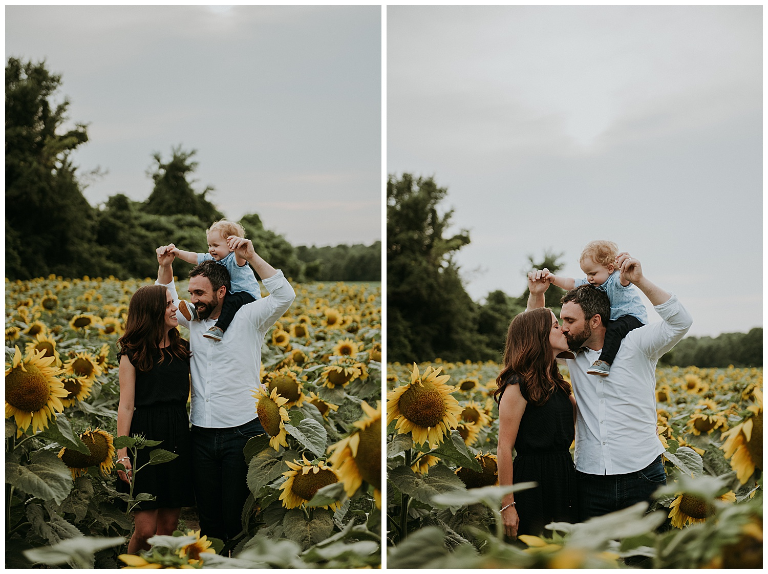 Holly McMurter Photographs | Prince Edward County Sunflower Family Session_0007.jpg