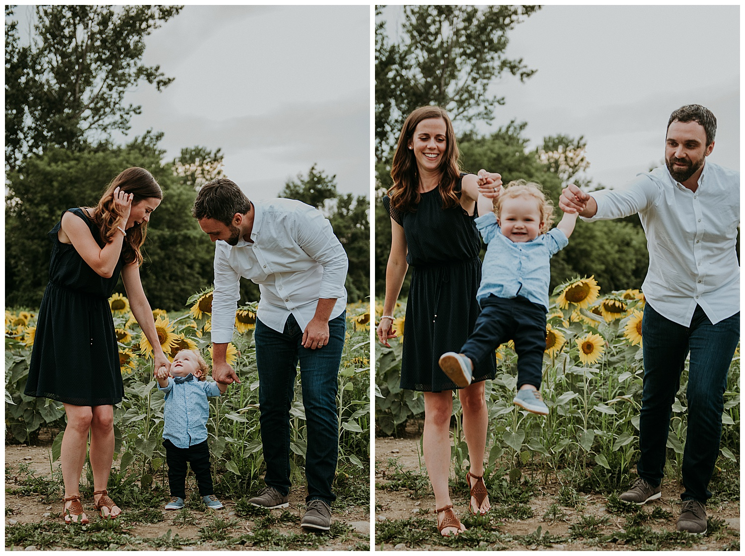 Holly McMurter Photographs | Prince Edward County Sunflower Family Session_0015.jpg