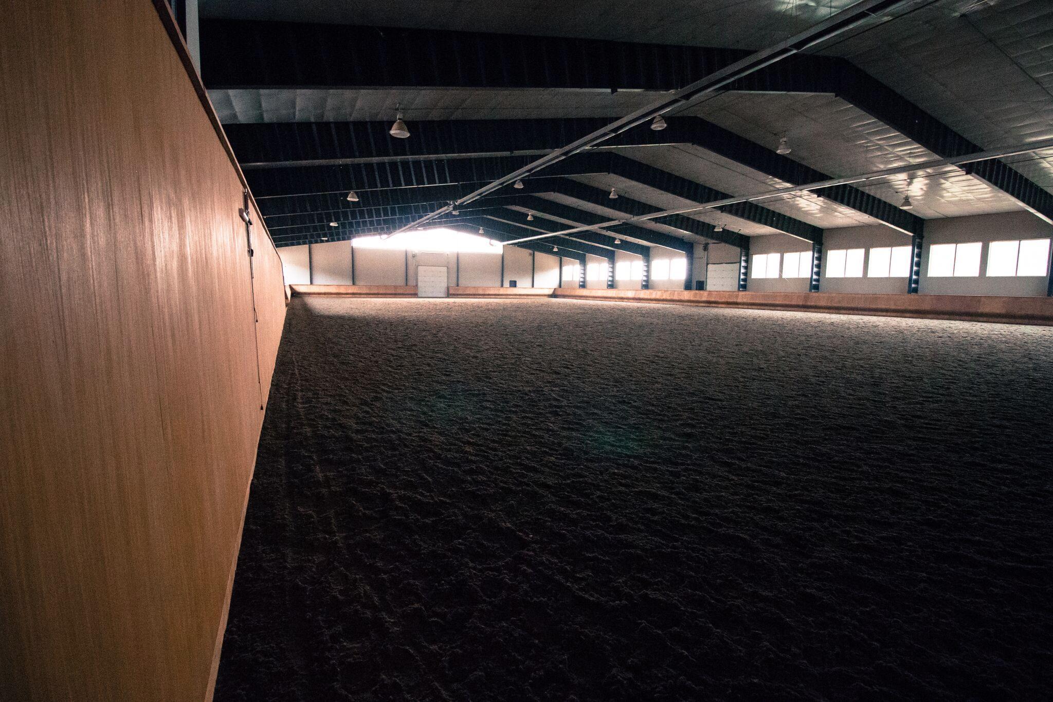 FF Arena.jpg