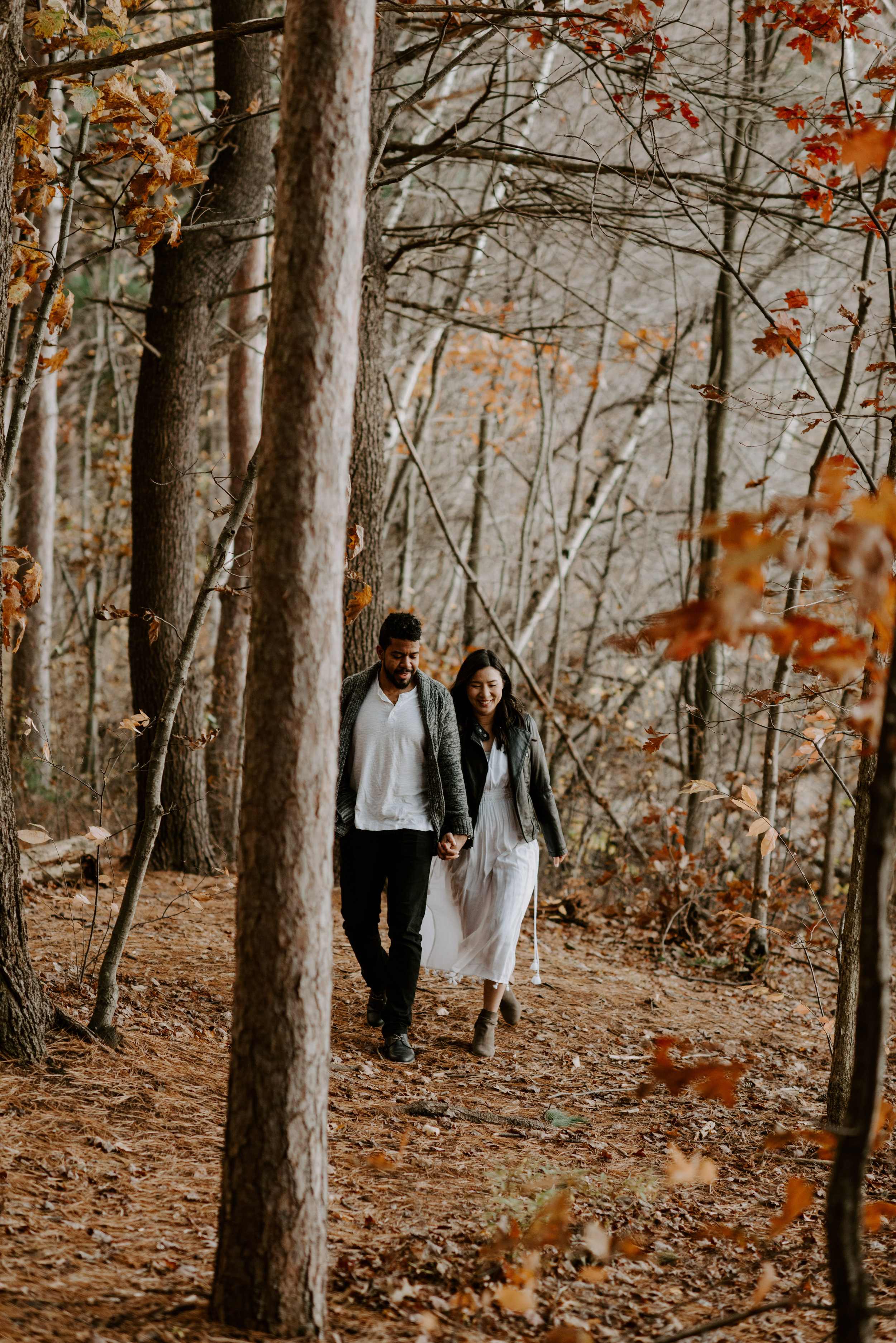 boston fall foliage engagement session at middlesex fells   boston wedding photographer