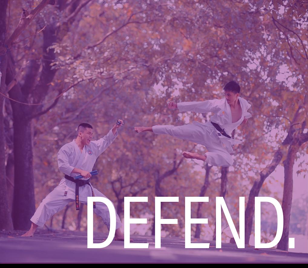 Defend 2.png