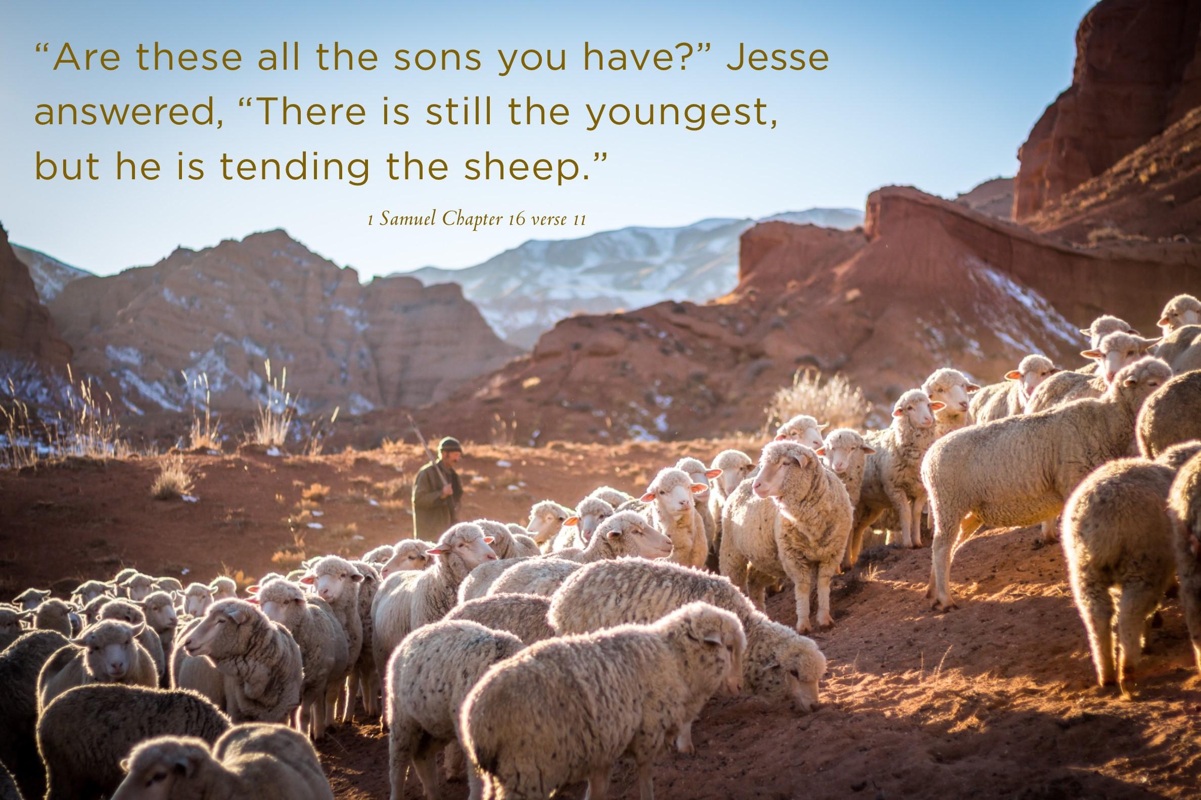 1 Samuel Chapter 16.jpg