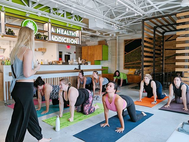 Juice Palm | @yogastorynwa  Morning yoga flow with some mimosas🥂 👌 has us saying Namaste this Saturday