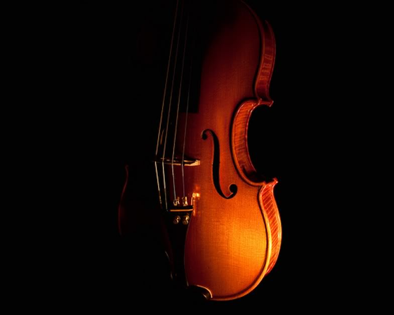 MusiCal Inspiration - weddings/events/lessons