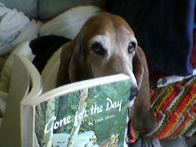 lucy reading gone for the day.jpg