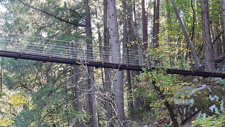 Suspension Bridge.jpg