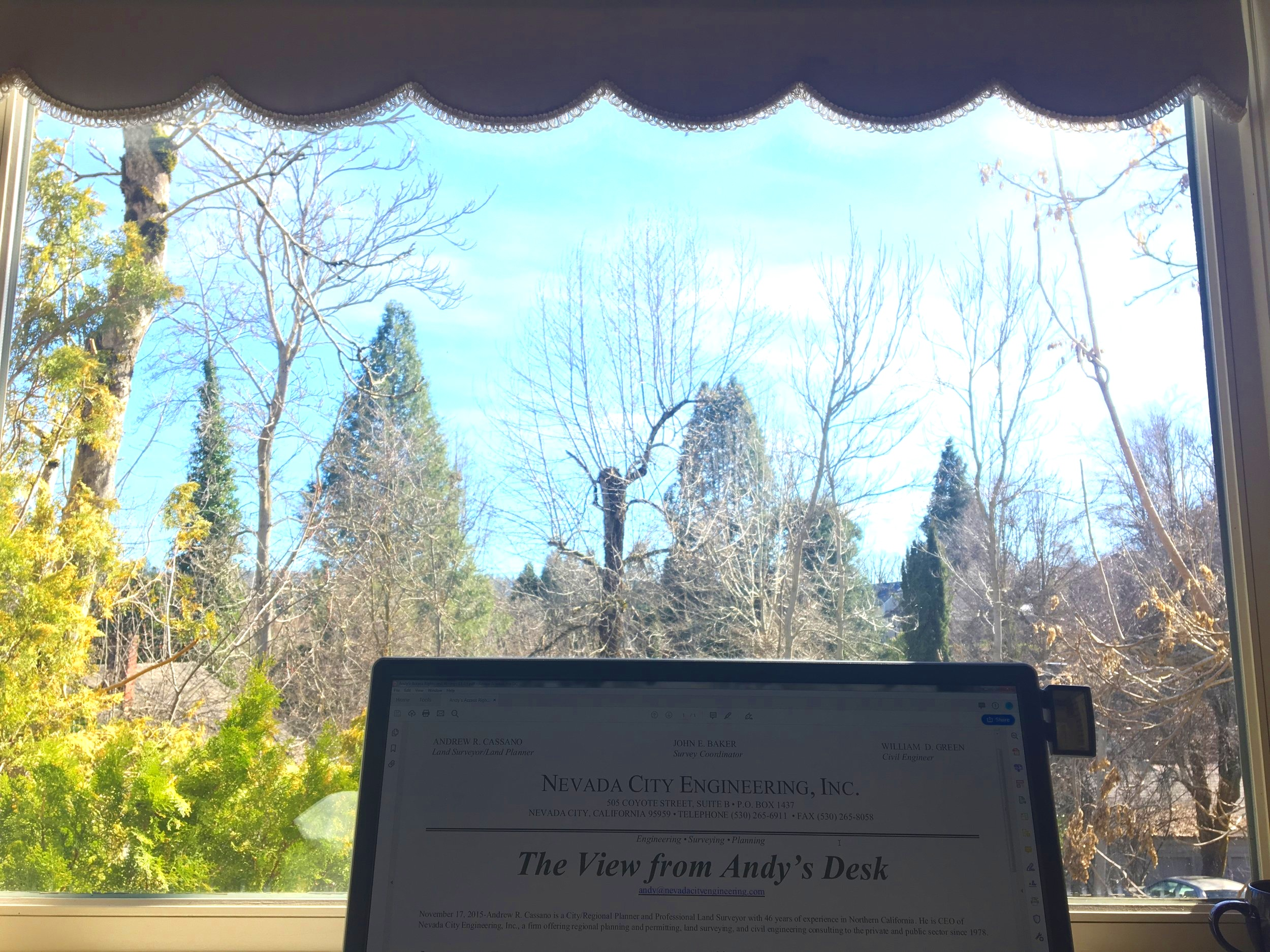 The View from Andy's Desk - Newsletter