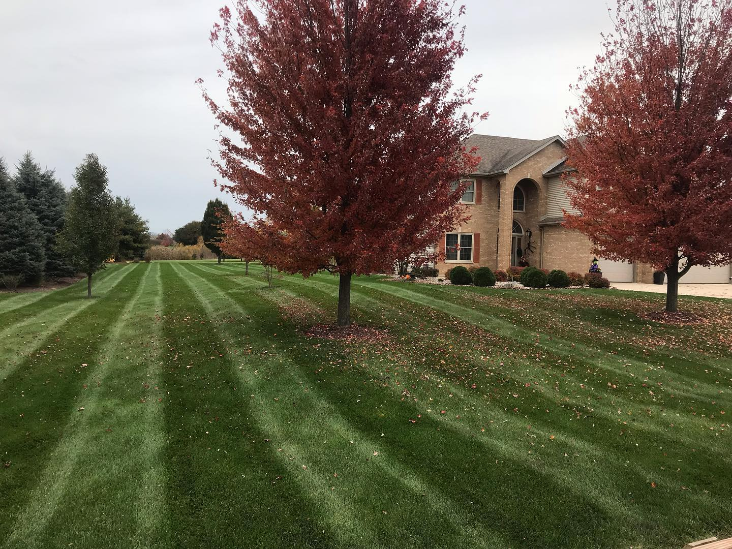 - mowing