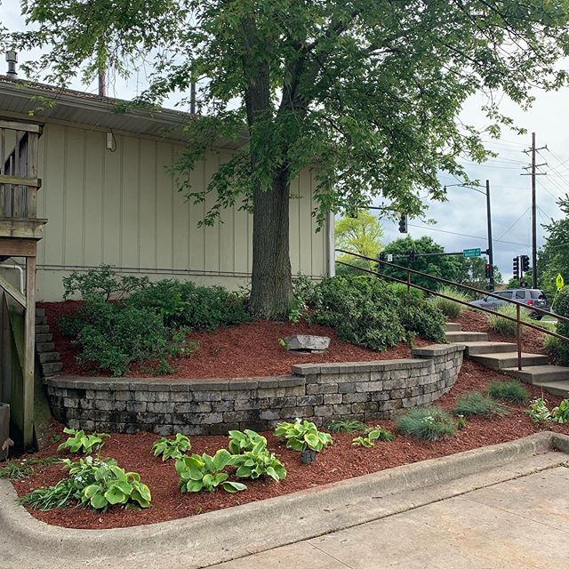 The guys did a great job with this clean up and mulch job. #groundeffects red mulch always looks great. . . . #lawncare #landscaping #mulch #cleanup #summer #realestate #lawoffice