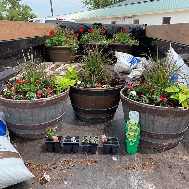 Did you know we do annual planters?  Do you have pots that need filled? -We will pick them up, plant them, and deliver them. . . Visit our website to request an estimate. ✔️westhaulingandlandscaping.com ✔️ . . . #landscaping #lawncare #annuals #annualflowers #flowers #spring #planting
