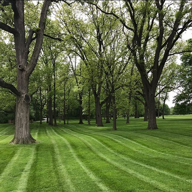 Such a great property to maintain and even better customers. . . . #wilsonresidence #mowing #lawncare #throwback #maintenance #stripes #summer #realestate
