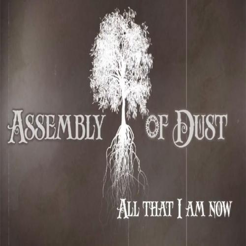 assembly of dust.jpg