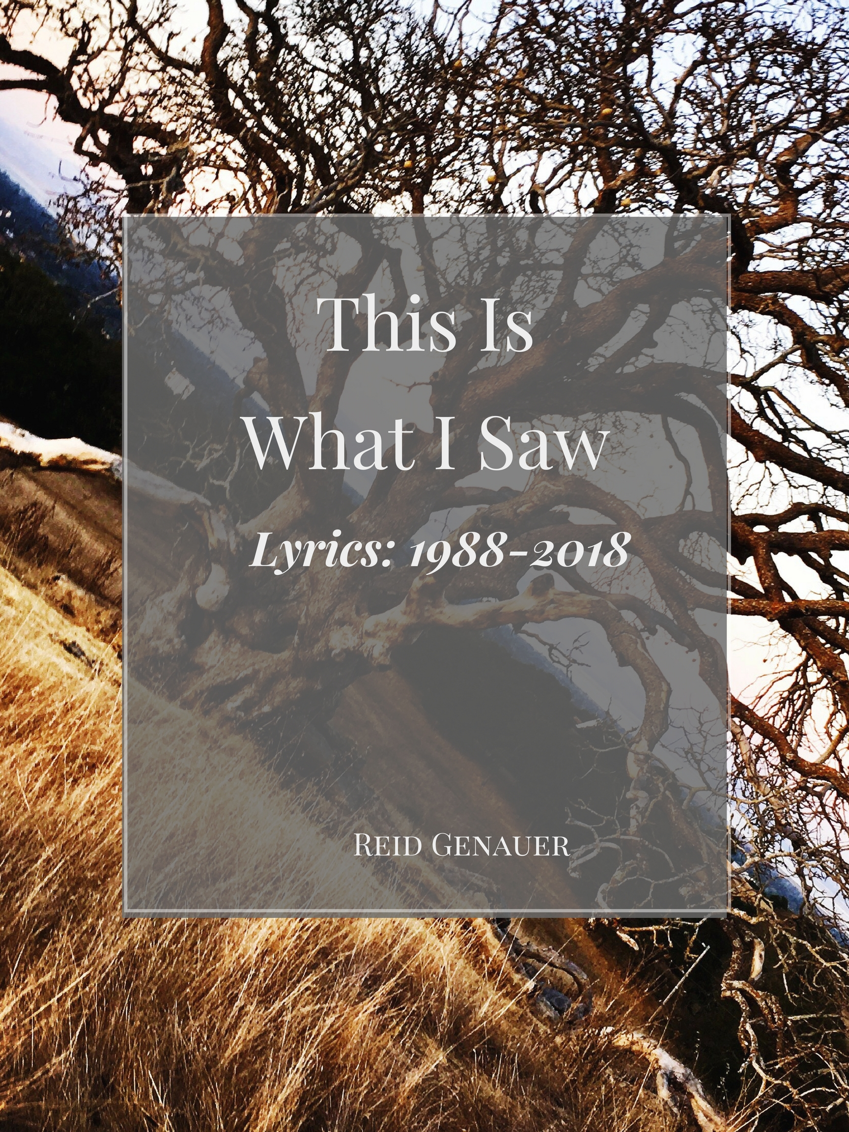 This-Is_What_I-Saw_Reid-Genaauer
