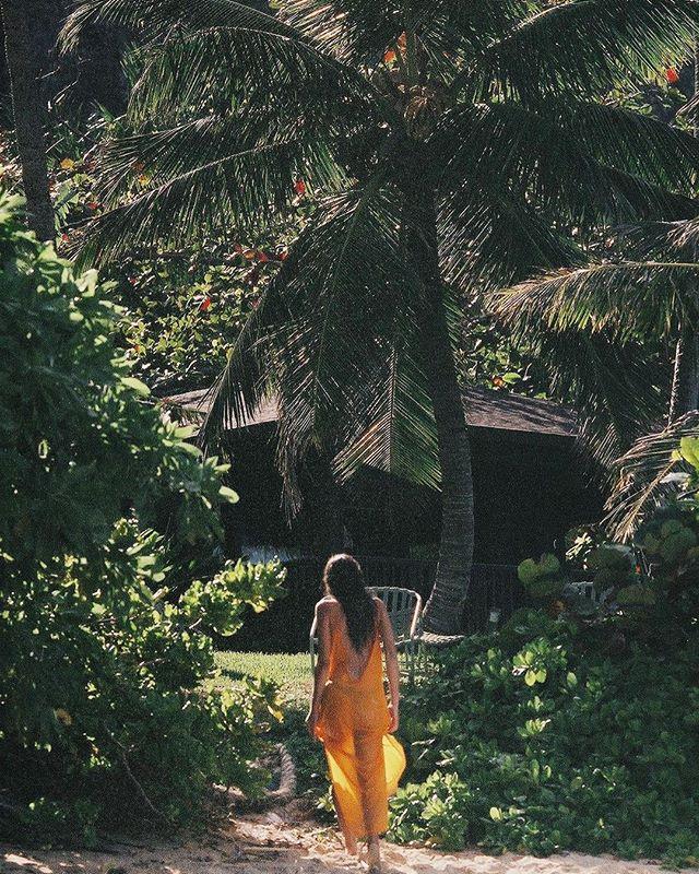 onward. 🦎 #35mm #film