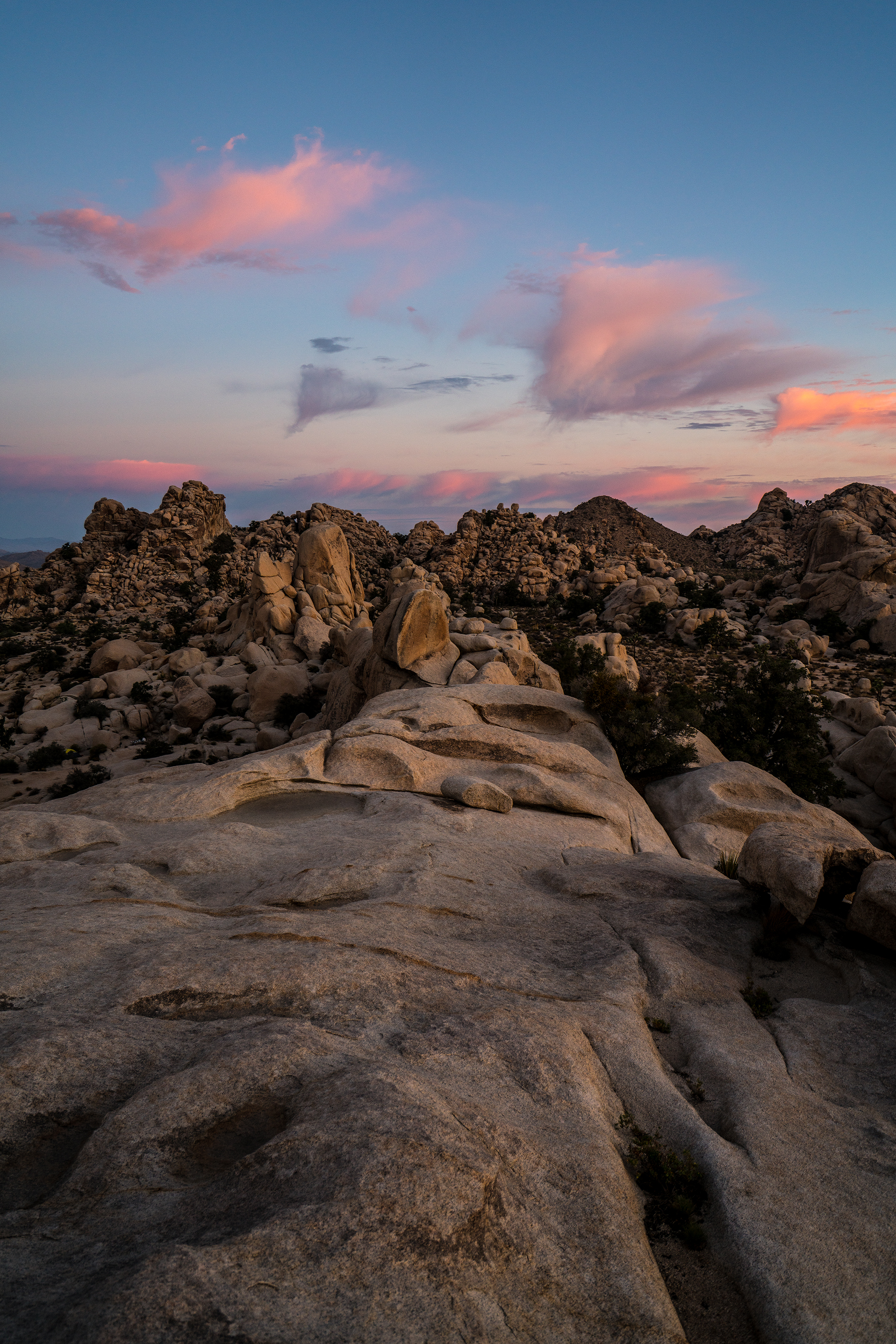 Joshua_Tree_Rocks_Sunrise_WEB.jpg
