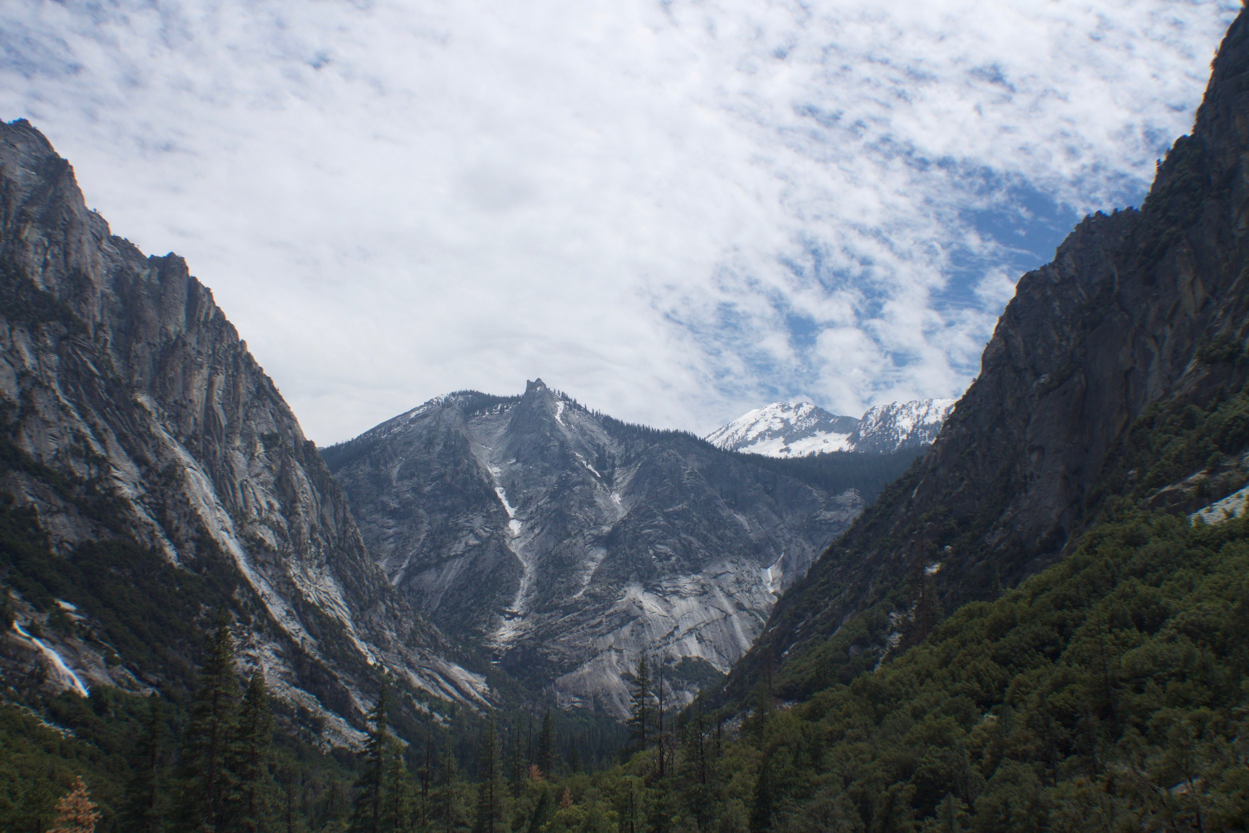 The South Fork - Kings Canyon National Park