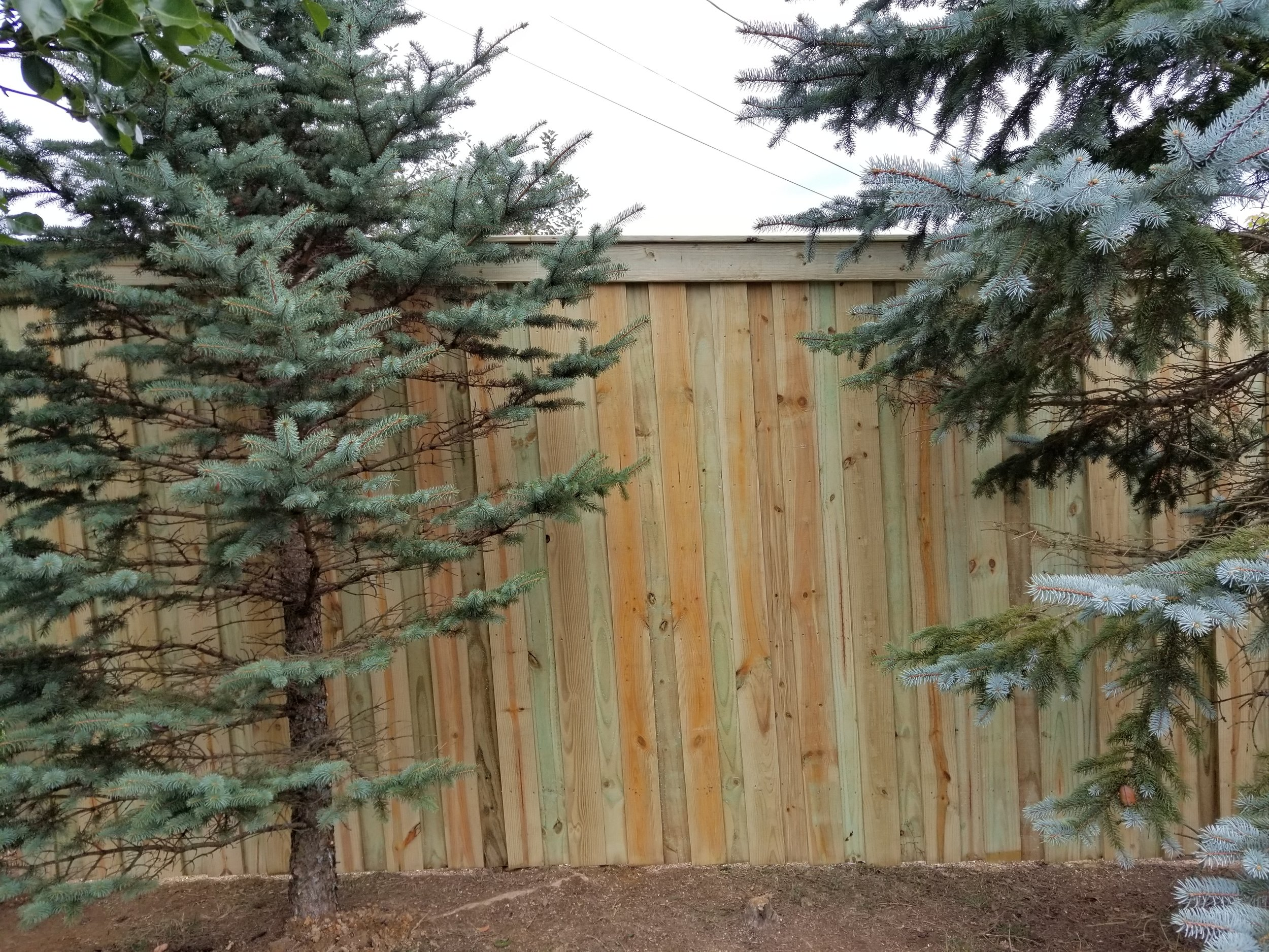 New Board On Board Privacy Fence 190 Feet (Gray, Tn)