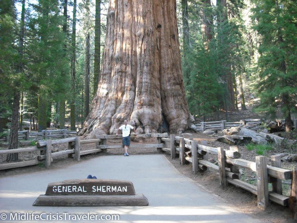 Sequoia-35.jpg