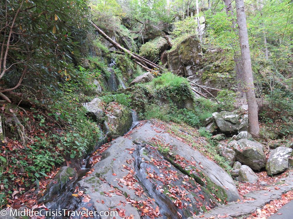 Great Smoky Mountains-163.jpg