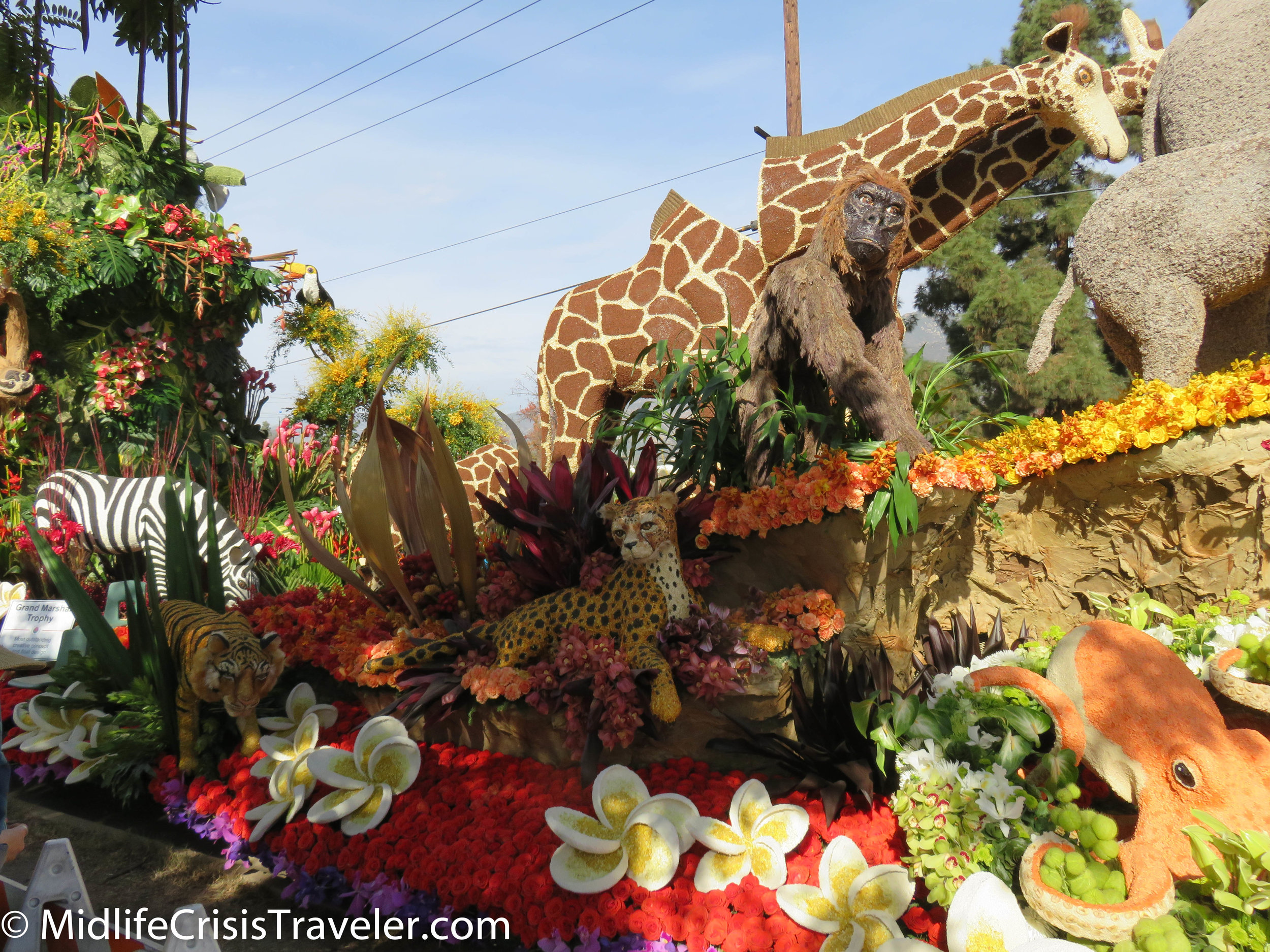 Rose Bowl Parade 2018-17.jpg