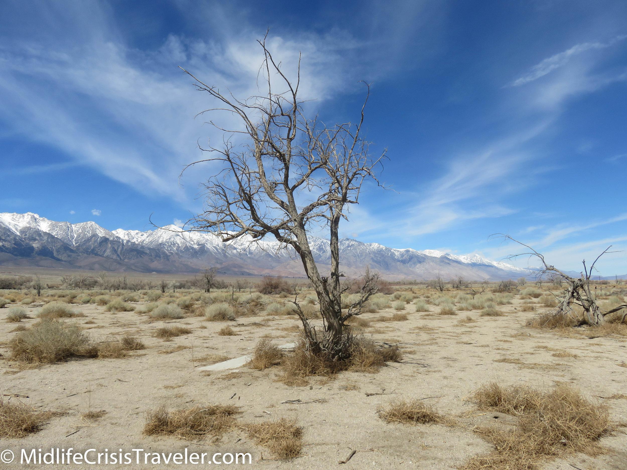 Manzanar-126.jpg