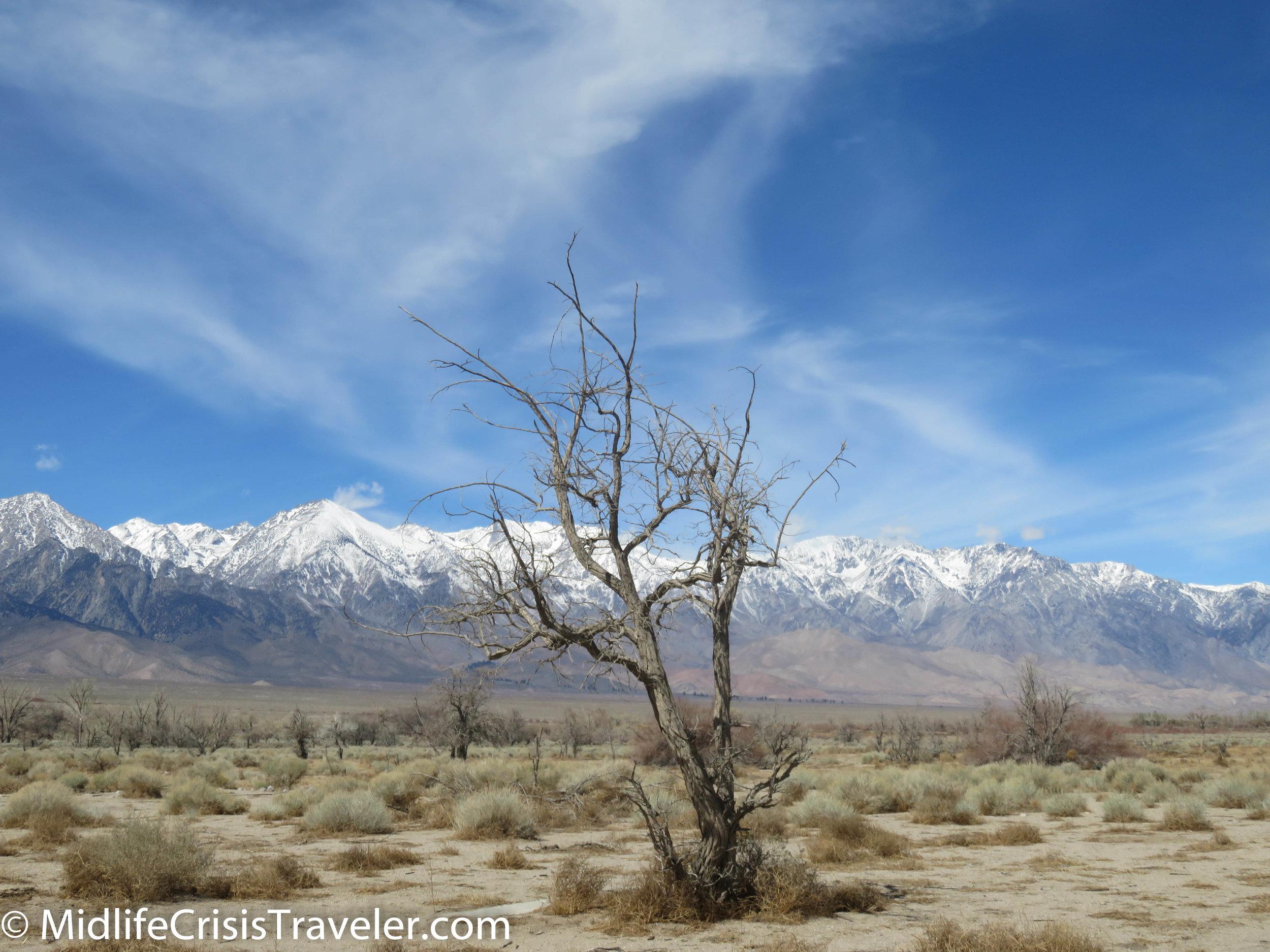 Manzanar-122.jpg
