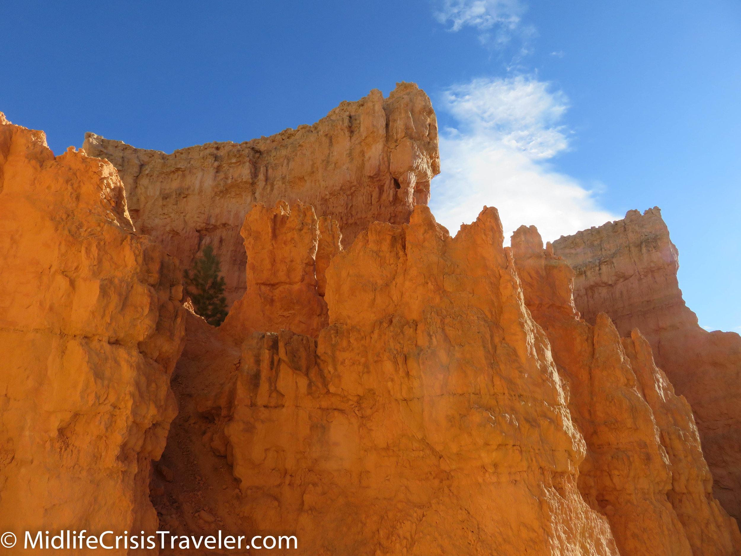 Bryce Canyon NP Navajo Loop-12.jpg
