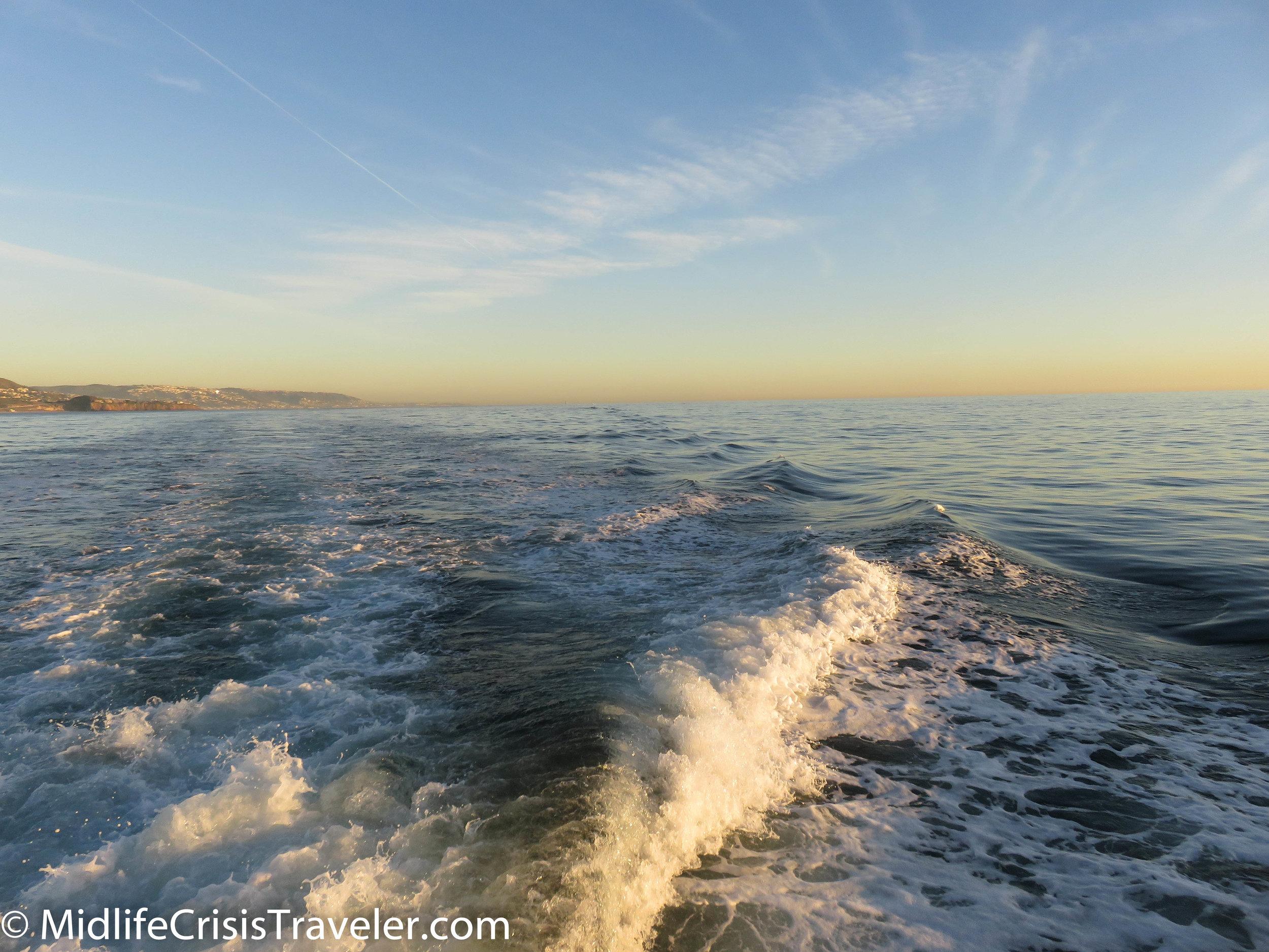Whale Watching-37.jpg